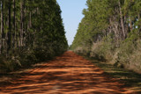 Red Dirt Road by elkay, Photography->Landscape gallery