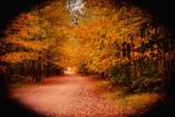 Autom Lane by unclejoe85, photography->landscape gallery