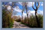 Walcheren Country Roads & Paths 05 by corngrowth, Photography->Landscape gallery