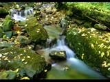 Dollar Glen by pom1, Photography->Waterfalls gallery