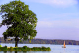 Lake Scene by Ramad, photography->landscape gallery