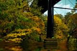 Autumnal Walk 4 by biffobear, photography->nature gallery