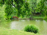 Spring Harvest by jojomercury, Photography->Landscape gallery