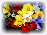 The Spring Has Sprung by LynEve, Photography->Flowers gallery