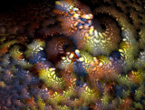 Mother Lode by jswgpb, Abstract->Fractal gallery