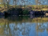 Peaceful Park by kidder, Photography->Landscape gallery