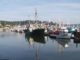 Newport Bay Marina by hamellr, Photography->Boats gallery