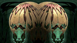 Double Billing by Flmngseabass, abstract gallery