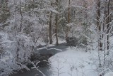Frozen Creek by SearwenSundarie01, Photography->Landscape gallery