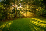 Warming Rays by phasmid, Photography->Landscape gallery