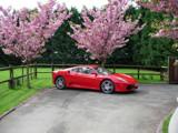 Ferrari F430 by freonwarrior, Photography->Cars gallery
