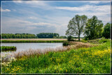 Summer Scene by corngrowth, photography->landscape gallery