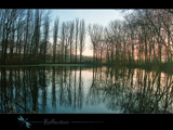 reflection by kodo34, Photography->Landscape gallery