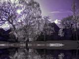 Alien Sun by biffobear, photography->manipulation gallery