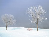 Picnic at 20 Below by photoimagery, Photography->Landscape gallery