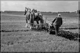 Ploughing The Fields by corngrowth, contests->b/w challenge gallery