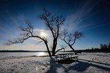 Frozen Lake Wingra by anderbre, photography->landscape gallery