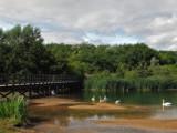 Washingwell Pond by biffobear, photography->landscape gallery