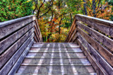 Stairway to Fall by stylo, photography->manipulation gallery