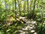 Maine Wildlife Preserve by Paprika114, Photography->Landscape gallery