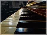 Ivories by Dunstickin, photography->general gallery
