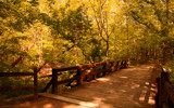 Goldenpath Bridge by casechaser, photography->bridges gallery