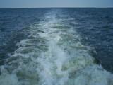 Pamlico Wake by Mvillian, Photography->Water gallery