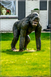 Peel Me A 'Nana by corngrowth, photography->sculpture gallery