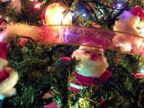 Santa cutie by Trin, Holidays->Christmas gallery