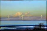 No Cold Feet For The Wind Turbines 2 by corngrowth, photography->shorelines gallery