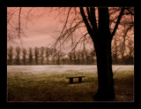 frosty afternoon by JQ, Photography->Landscape gallery