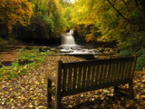 A seat by biffobear, photography->waterfalls gallery