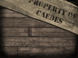 PROPERTY OF CAEDES by Kevin_Hayden, caedes gallery