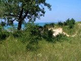 Dunes Day by jojomercury, Photography->Landscape gallery