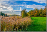 Creek Bank 2 by corngrowth, photography->landscape gallery