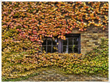 Summer Is Almost Gone by WmC, photography->architecture gallery