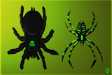 Two More Spooky Spiderzz by Jhihmoac, illustrations->digital gallery