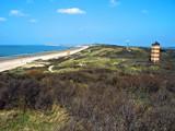 Zeeland Coast (01), Guidance by corngrowth, Photography->Shorelines gallery