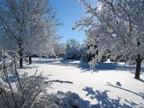 First Snow of '04 by Voelker2k, photography->landscape gallery