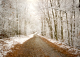 Snowfall down a gravel road by pitcherthis, Photography->Landscape gallery