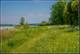 Just Nature by corngrowth, photography->landscape gallery