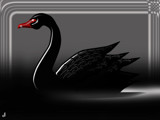 The Black Swan - 2010 by Jhihmoac, illustrations->digital gallery