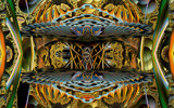 Ignis Fatuus by casechaser, abstract->fractal gallery