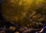 The Realm of Answered Prayers by Pjsee16, photography->landscape gallery