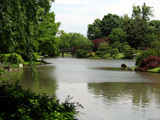 MBG - Japanese Garden III by Hottrockin, Photography->Landscape gallery