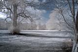 Bywell by biffobear, photography->landscape gallery