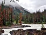 Mezmerizing Mountain River by Zava, photography->water gallery