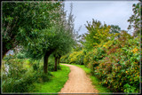 Path Along The Stream by corngrowth, photography->shorelines gallery