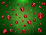 All is Full of Ladybugs by vladstudio, abstract gallery