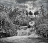 A Moorland Stream by Dunstickin, photography->manipulation gallery